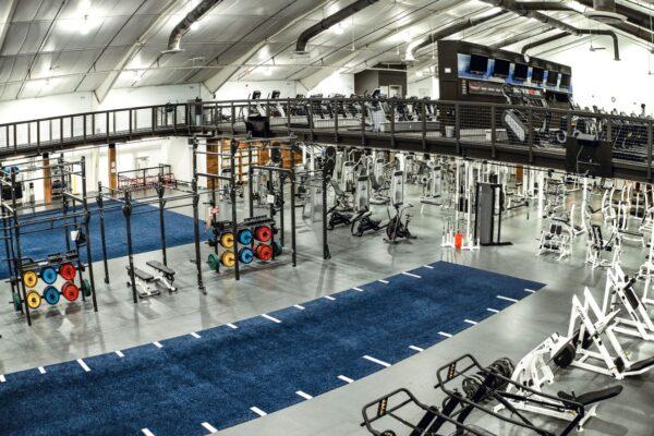 gym fitness training